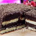 Фантастический шоколадный торт без выпечки за 15 минут!